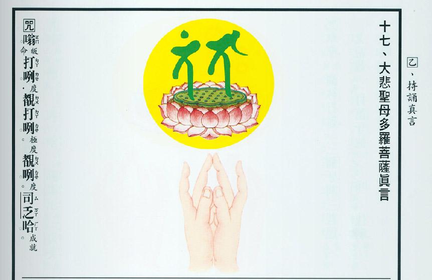 绿度母心咒(大悲聖母多羅菩薩真言) - 不历僧祗获法身 - 世俗文笔 淫杀罪重 诸功德中 放生第一